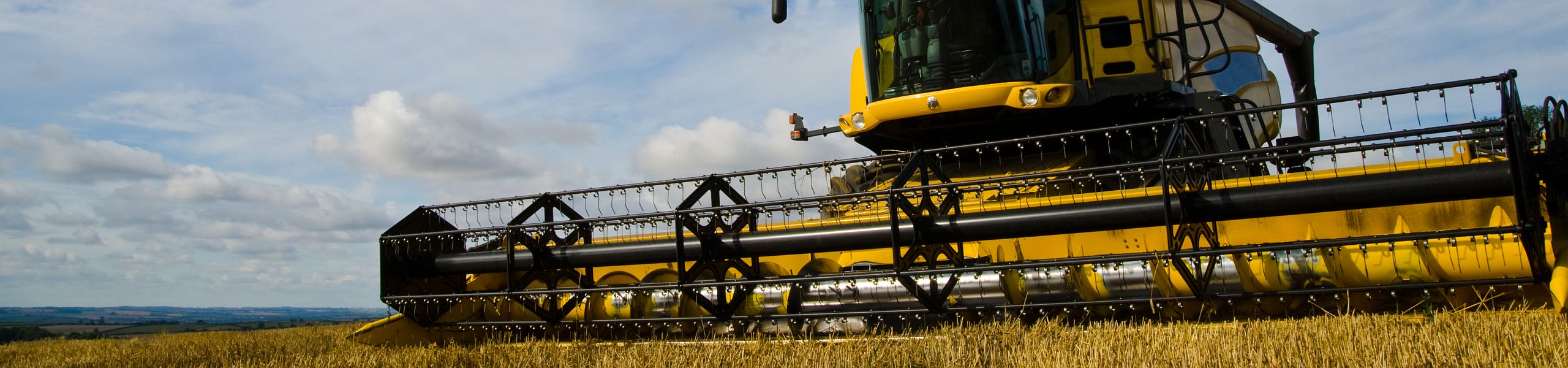 žemės ūkio pasaulinės prekybos sistemos politiką