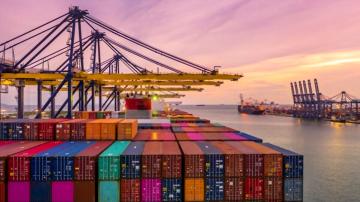 prekybos kontrolės ir eksporto sistema)